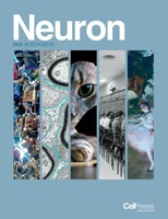 Two papers make 'Best of Neuron' list